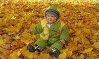 Фотоконкурс «Осенние прогулки»